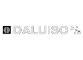 Daluiso A/S